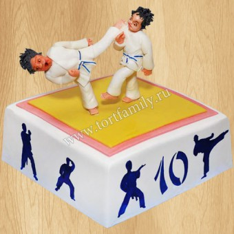 торт для дзюдоиста фото