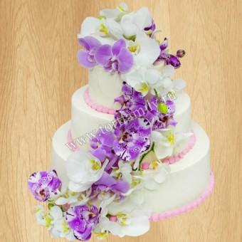 Торт №: S1153