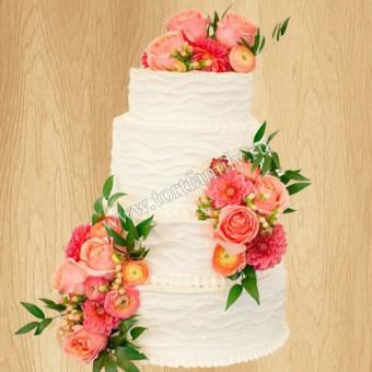 Торт №: S153