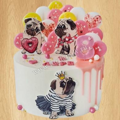 Торт щенки мопса