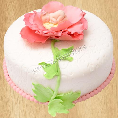 Торт №: D51