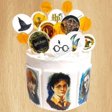 Торт Гарри Поттер с совой и книгой