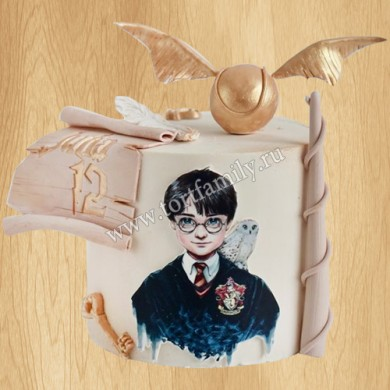 Торт сова, снитч, очки, волшебная палочка