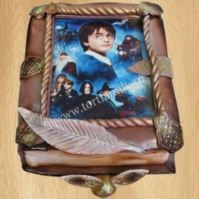 Торт виде Гарри Поттера