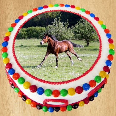 Торт №: F13