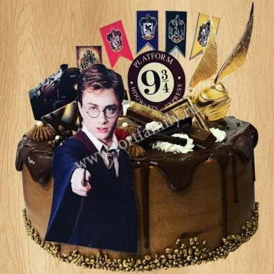 Торт в стиле Гарри Поттера