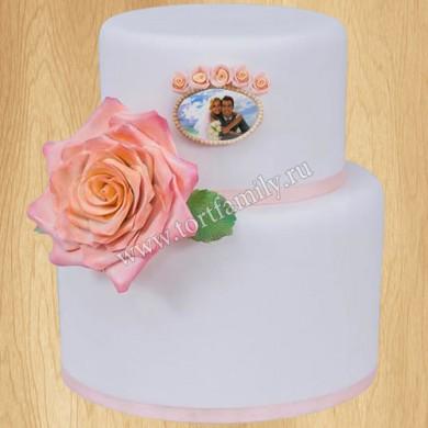 Торт №: F48