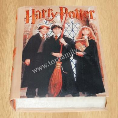Торт книга Гарри Поттер