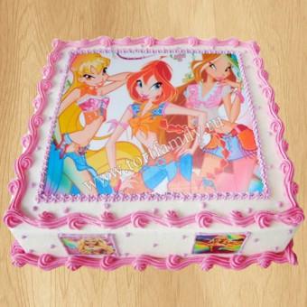 Торт №: F9