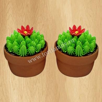 Капкейки кактусы