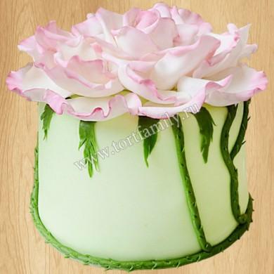 Торт №: P210