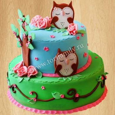 Торт с совами женщине