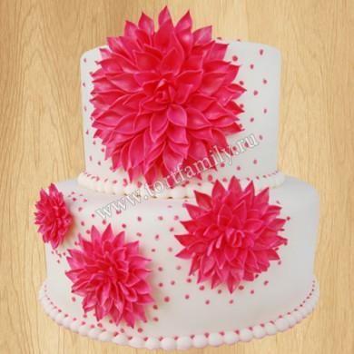 Торт №: P741