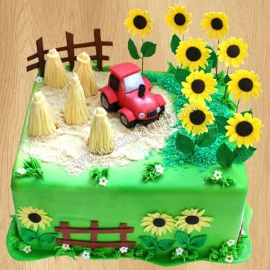Торт для комбайнера