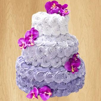Торт №: S1141