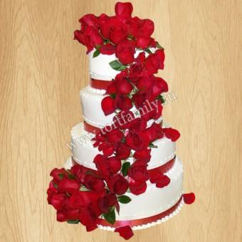 Торт №: S1157