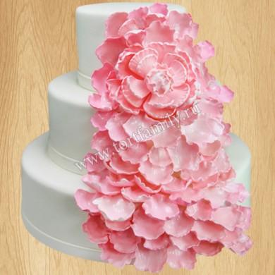 Торт №: S163