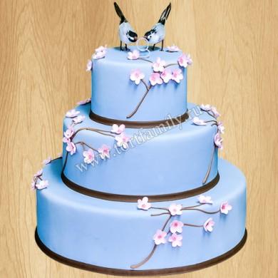 Торт №: S241