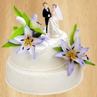 Торт №: S248