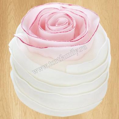 Торт №: S505